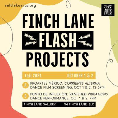 Finch Lane FLASH Project: PROArtes México & P...