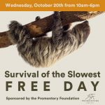 Survival of the Slowest: Free Day