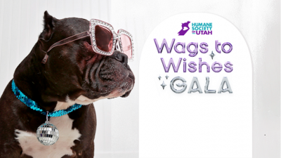 Wags to Wishes Virtual Gala