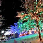 Ogden's Christmas Village 2021