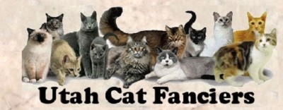 Utah Cat Fanciers