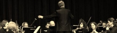 Chamber Orchestra Ogden