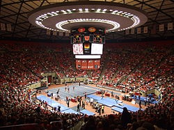 "Utah Utes (""Red Rocks"") Women's Gymnastics"