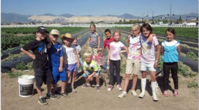 Petersen Family Farm